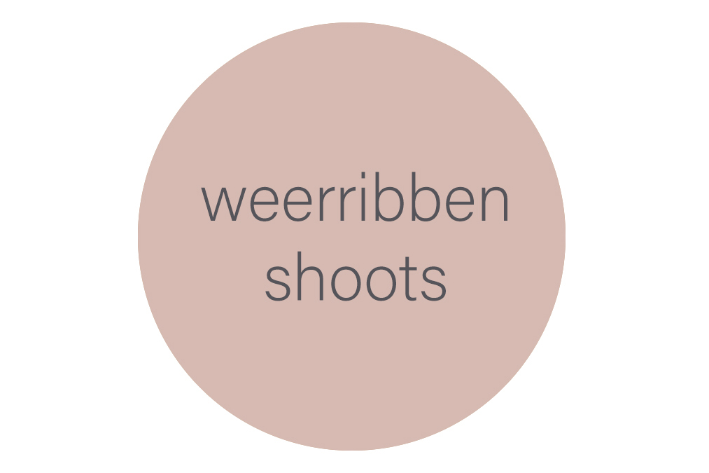 Weerribben shoots